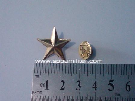 pin bintang