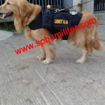 HARNESS & BAG ANJING K9 TACTICAL DOG
